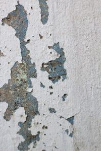 Jak zlikvidovat plíseň na stěně