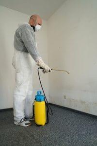 Profesionální a kvalitní odstranění plísní plomocí nátěru LSG