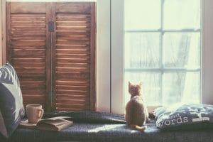 Tipy jak umýt okna