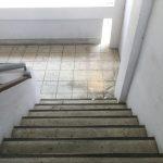 generální čištění podlah