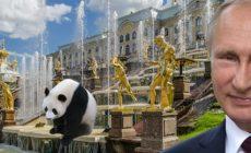 Rusko a Čína: Bude vojenská a politická aliance realitou? Nová éra mezinárodních vztahů. Co řekl Putin v Petrohradu? Huawei jde do Ruska. Za pár dní s Trumpem v Ósace. Dolar v centru pozornosti. Tři hlavní problémy