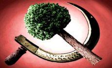 Je klimatická krize: Česko musí do války! Jen tak lze splnit požadavky ekovyděračů. Jaké máme šance proti Bundeswehru? Rebelové připoutaní ke Strakovce. Co by na to řekla Greta?