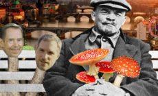 Houby v Praze: Poteče místo barvy brzy opět skutečná krev? Améby a houby sejí vítr. Kdy padne Čtvrtá říše? Jde o jaderné rakety u nás. Pořád stejná hra. Poučení v Mariánské ze srpna 2019. Milión krůčků do otroctví