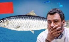 V Itálii testují Měkký Majdan: Milion chvilek pro Sardinky. Revoluční písně a technologie pro likvidaci Salviniho? Normální lidský svět se nesmí vrátit! Sorosova inovace: Už se protestuje i proti opozici! Kdy také na Letné?